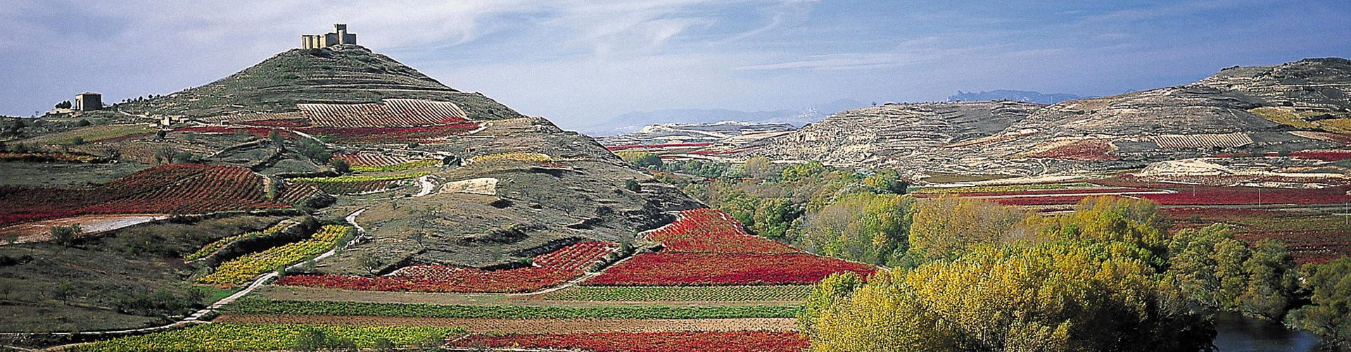 Rioja Vineyards in the Ebro River Valley Region of Spain