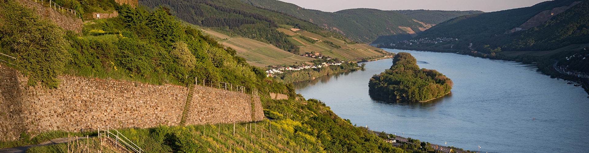 Eva Fricke Vineyards on the Rheingau in Germany