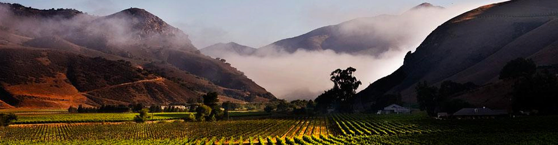 Santa Maria Valley Vineyards in Santa Barbara County, California