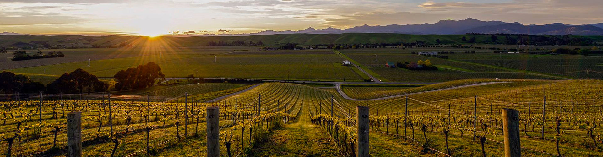 Greywacke Vineyards in Marlborough, New Zealand