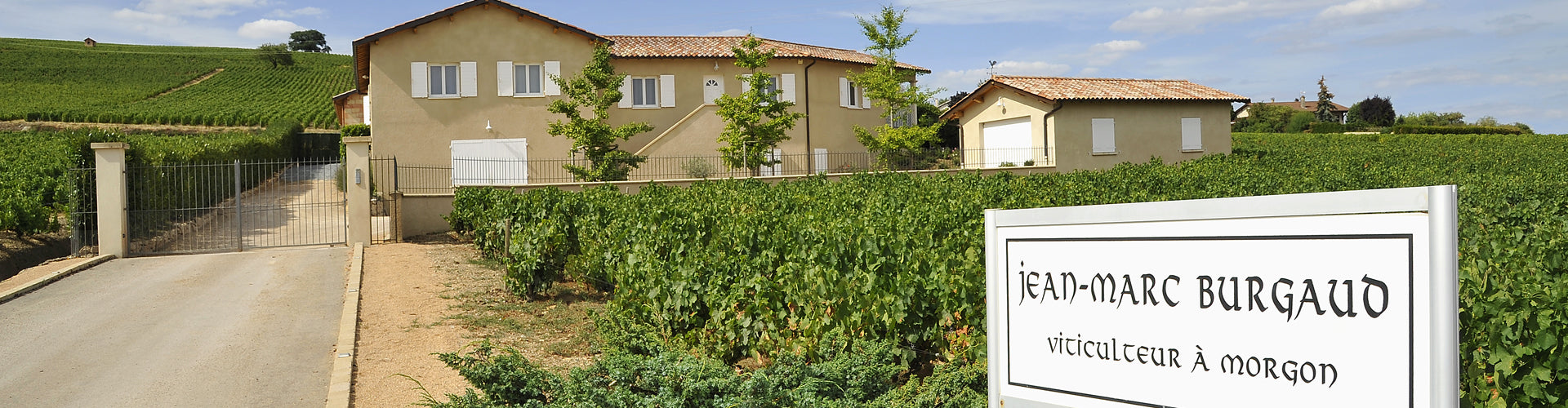 Jean-Marc Burgaud Winery Entrance and Vineyards