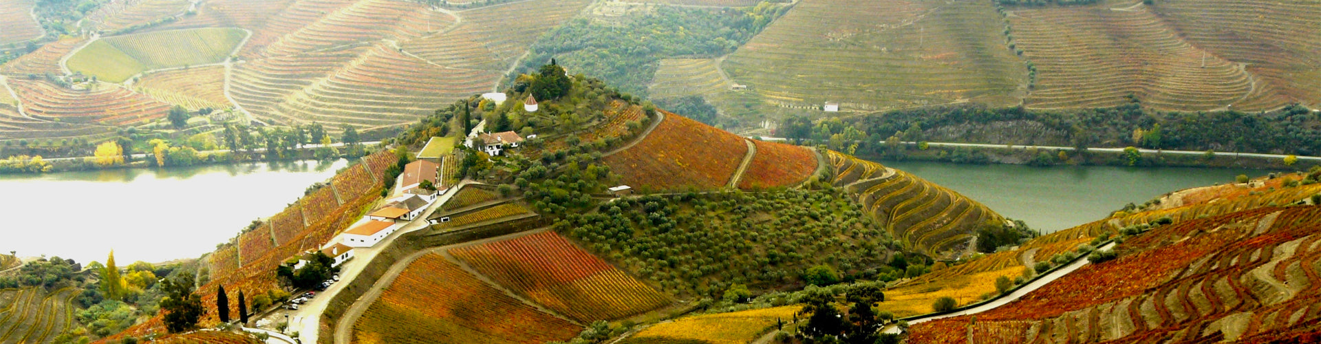 Quinta do Crasto Winery & Vineyards Douro Valley