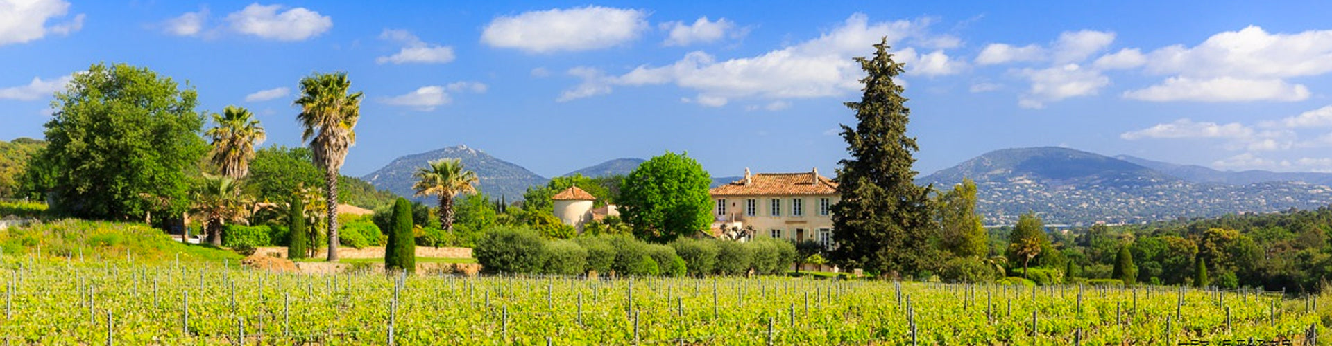 Château Barbeyrolles in Gassin, Saint-Tropez