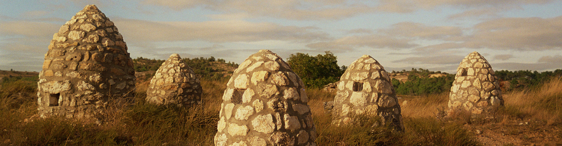 Traditional stone huts in Ribera del Duero Vineyards