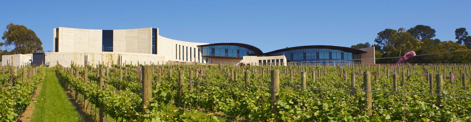 Port Phillip Wine Estate Winery in Mornington Peninsula