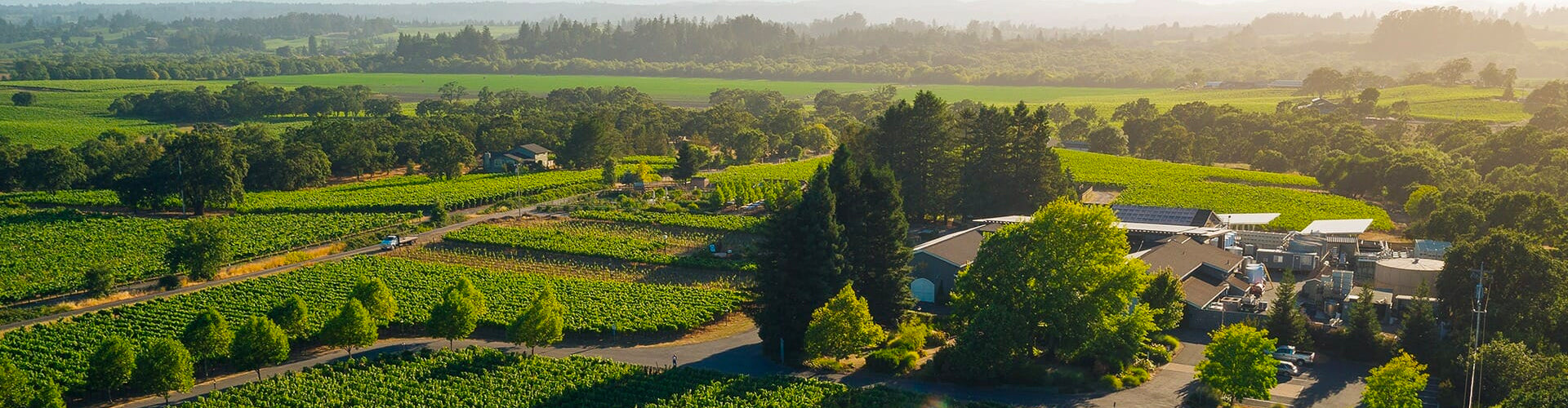 Arial shot of De Loach Winery & Vineyards in Sonoma County