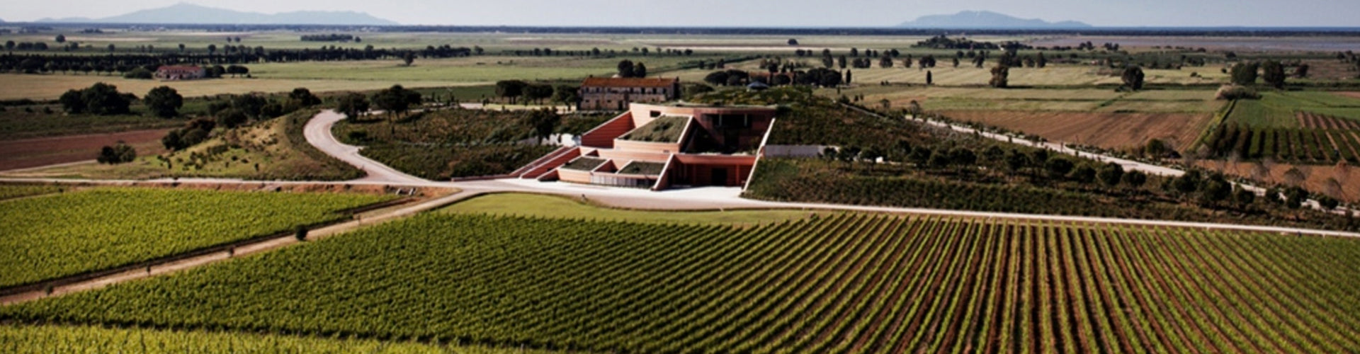 Antinori's Le Mortelle Winery and Vineyards in Maremma, Tuscany