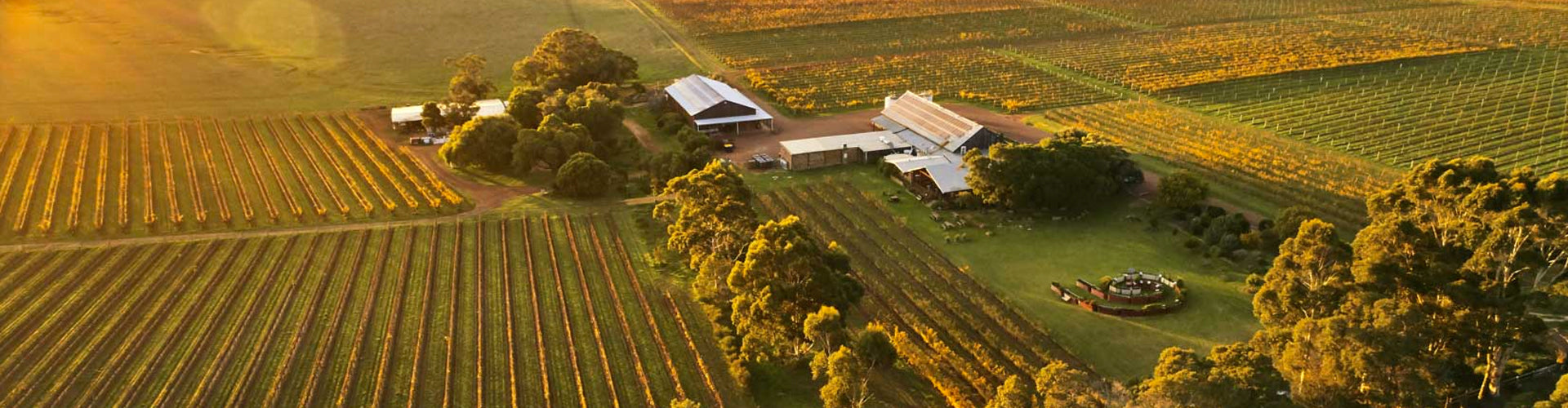 Arial photo of Cullen Wines Winery & Vineyards