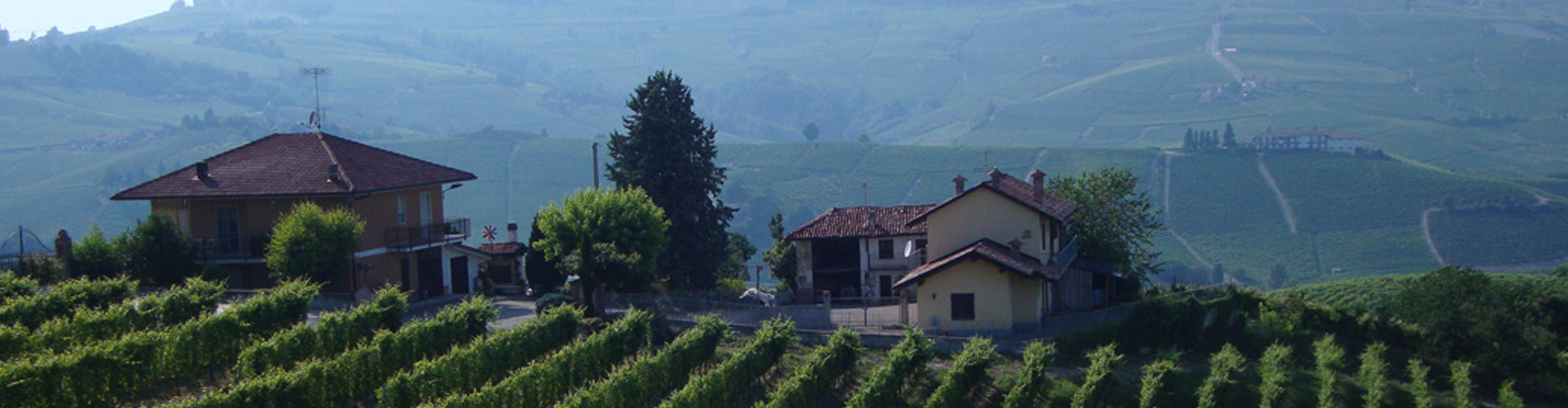 Giacosa Vineyards Neive in Piemonte, Italy