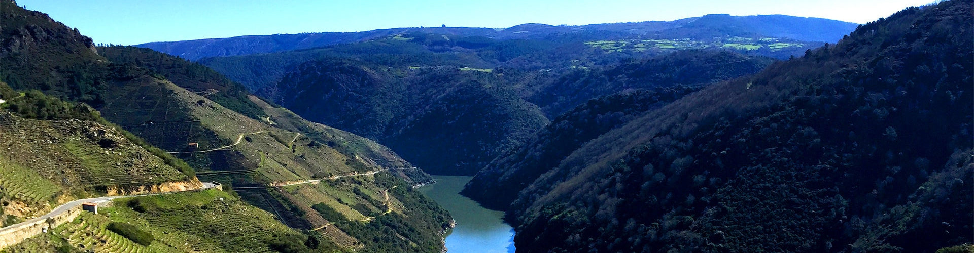 A view of vineyards in the Ribeira Sacra in Spain's Galicia Wine Region