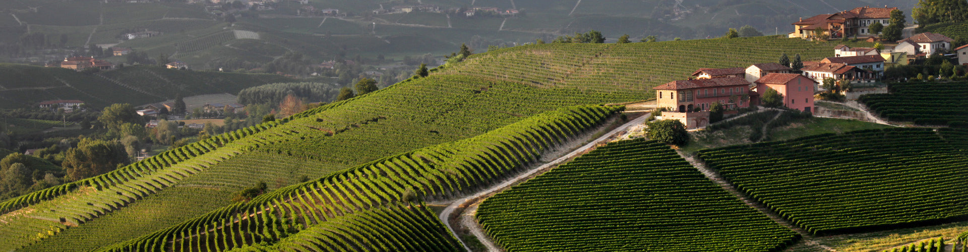 The Prunotto Estate and Vineyards in Piemonte, Italy
