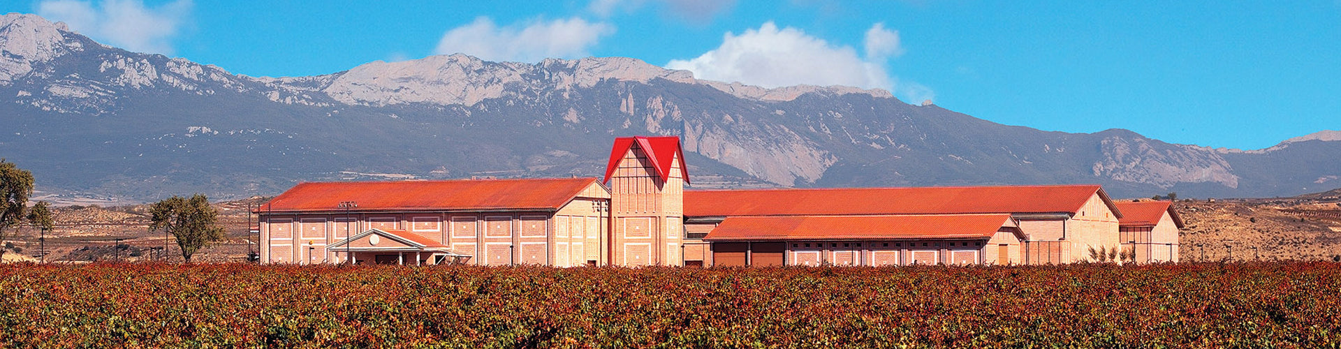 Finca Valpiedra Winery in the heart of the Vineyards