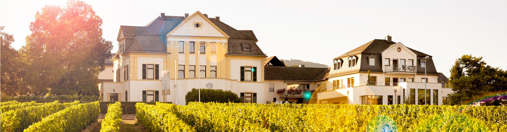 Weingut Spreitzer Winery and Vineyards