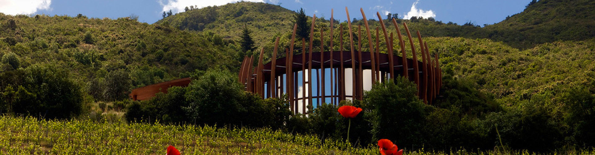 The Clos Apalta Winery in Chiles Colchagua Valley