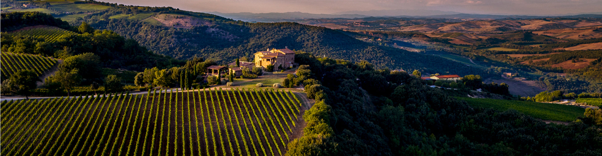 Ariel photo of Mastrojanni Estate and Vineyards in Montalcino, Tuscany
