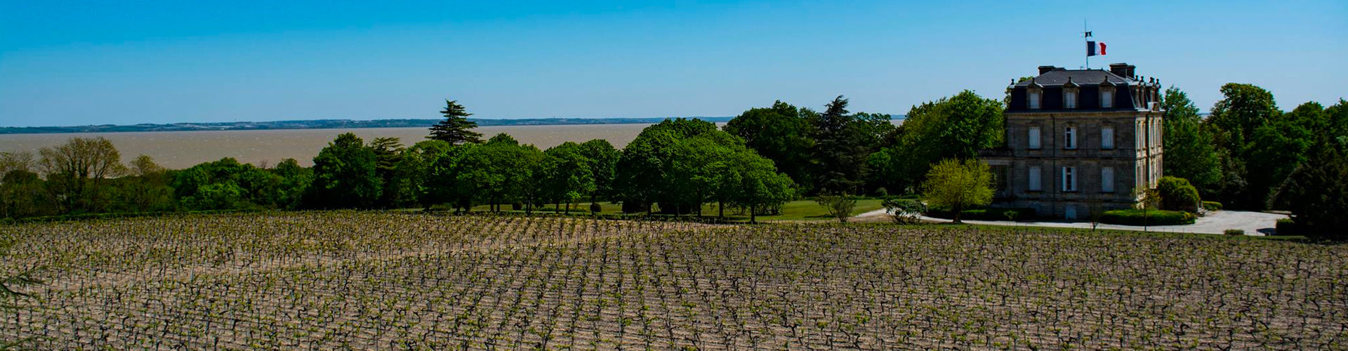 The Château La Tour de By and vineyards close to the Gironde in Bordeaux