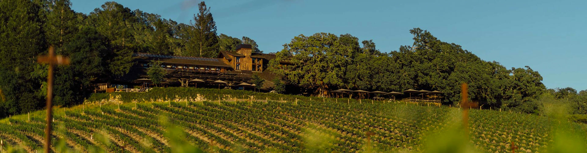 Joseph Phelps Winery & Vineyards in Napa Valley