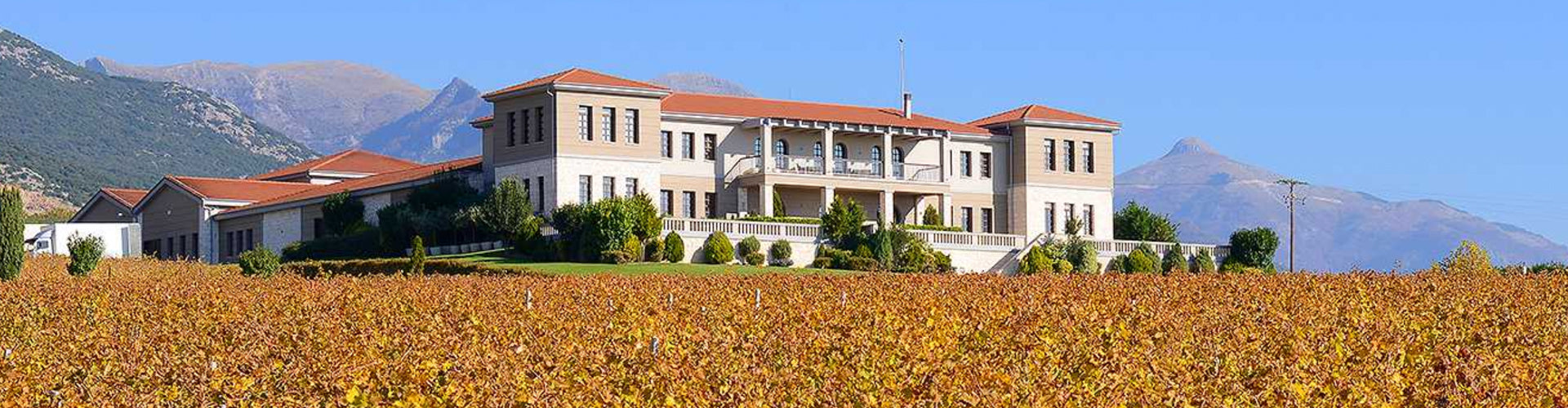 Ktima Biblia Chora Winery & Vineyards
