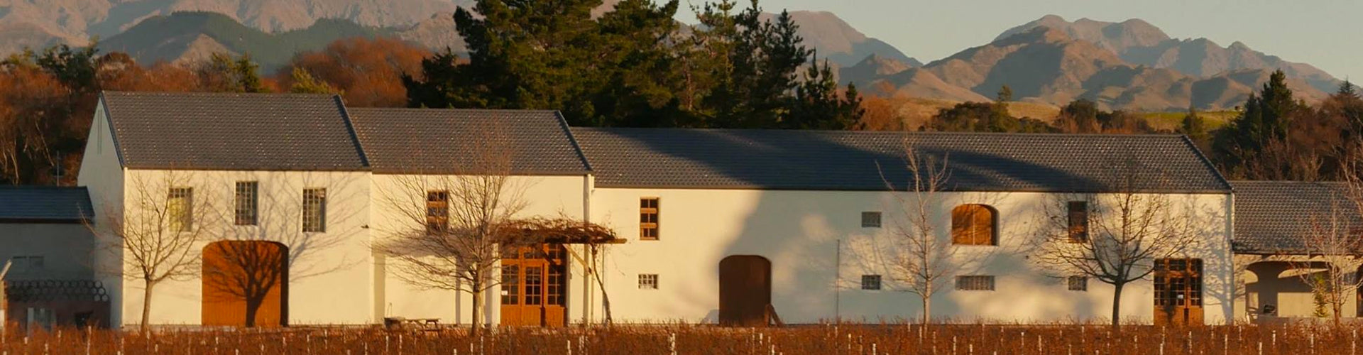 The Isabel Estate Winery Building