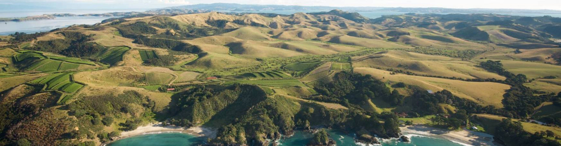 Man O' War Vineyards Waiheke Island New Zealand