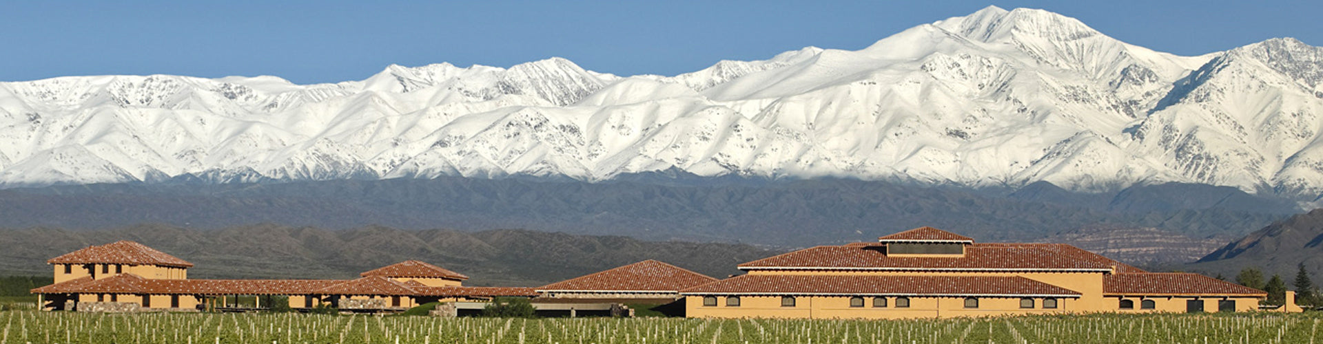 Finca Decero Winery in Mendoza