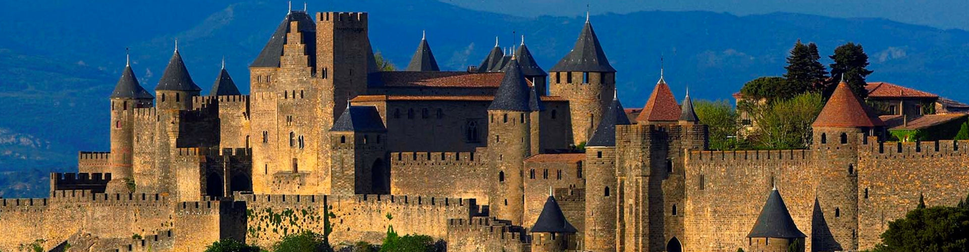 Town of Carcassonne in the Languedoc
