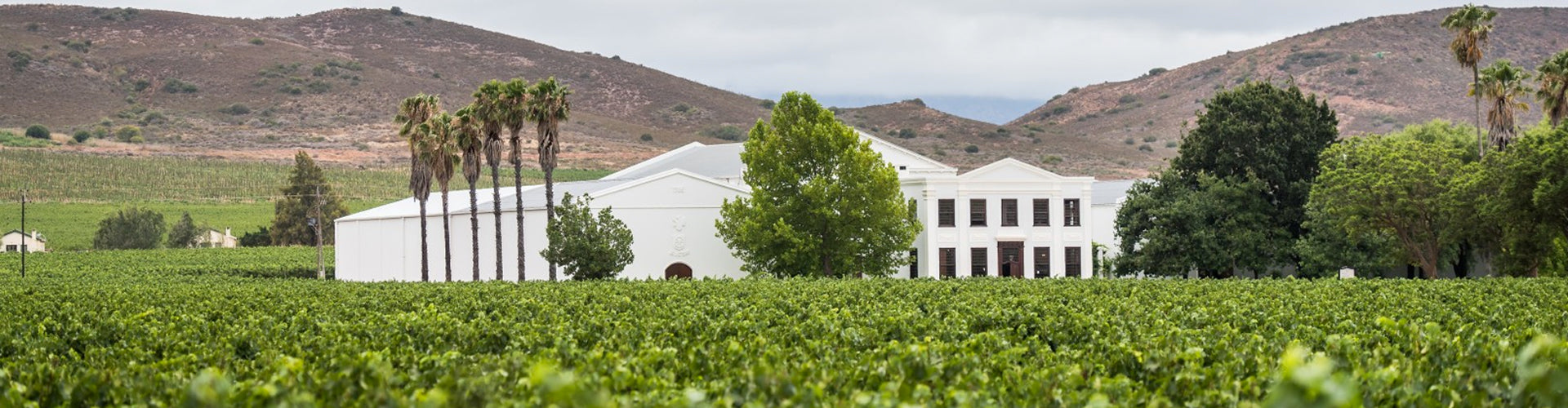 De Wetshof Estate House and Vineyards in Robertson, South Africa