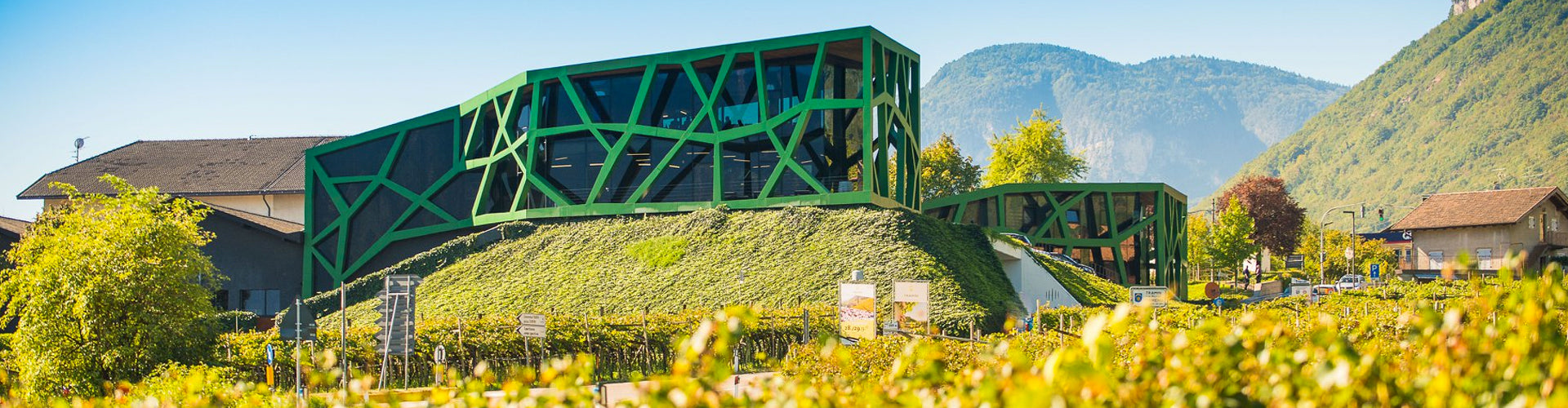 The Tramin Winery in Italy's Alto Adige