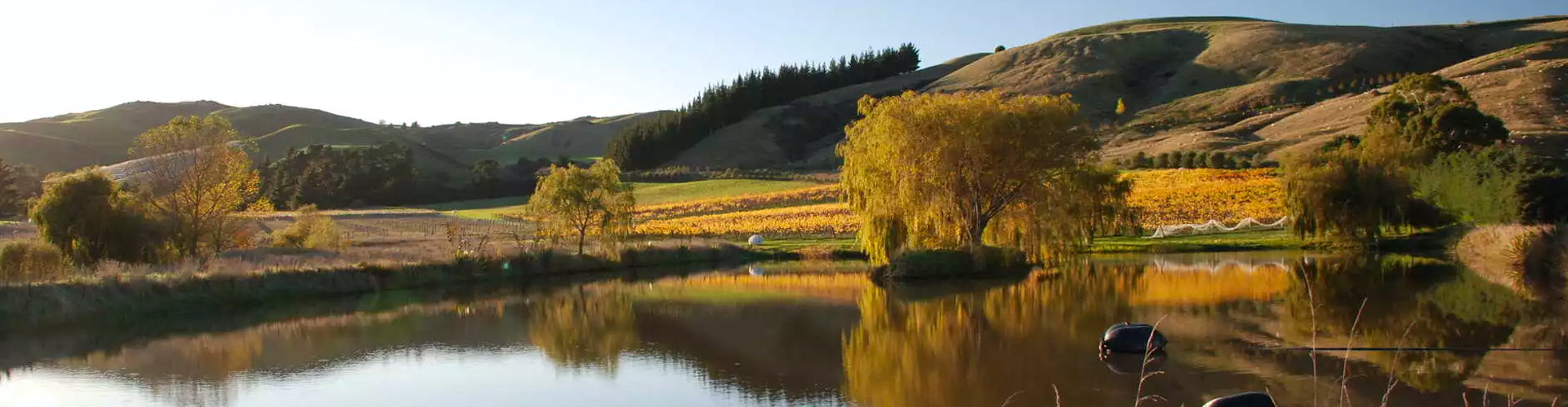 Muddy Water Wines: Waipara, New Zealand