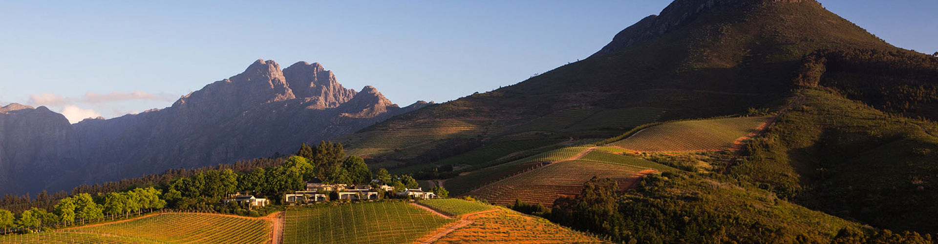 Delaire Graff Vineyards in Stellenbosch South Africa