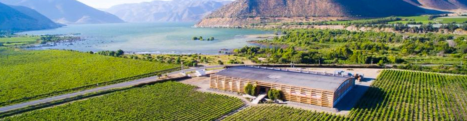Viña Falernia Winery and Vineyards Elqui Valley in Chile