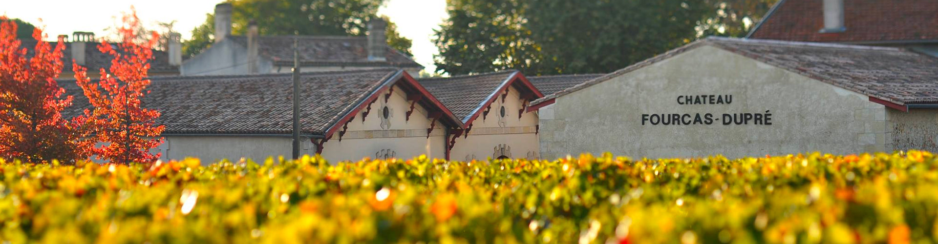 A view from the vineyard of the Château Fourcas Dupré Winery Buildings