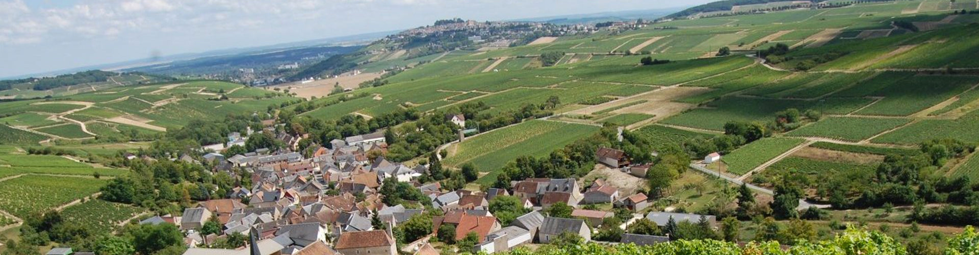 Cotat vineyards in Chavignol, Sancerre