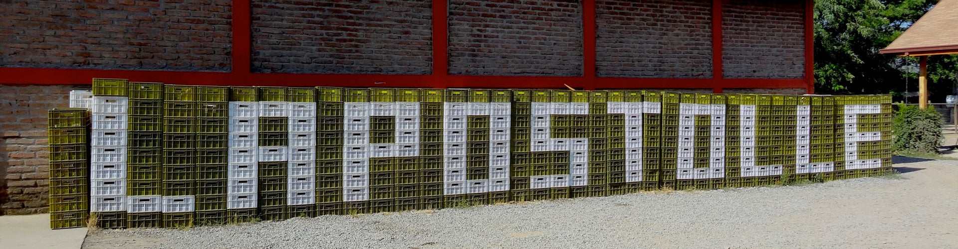 Grape harvest crates stacked in line spelling the word Lapostolle