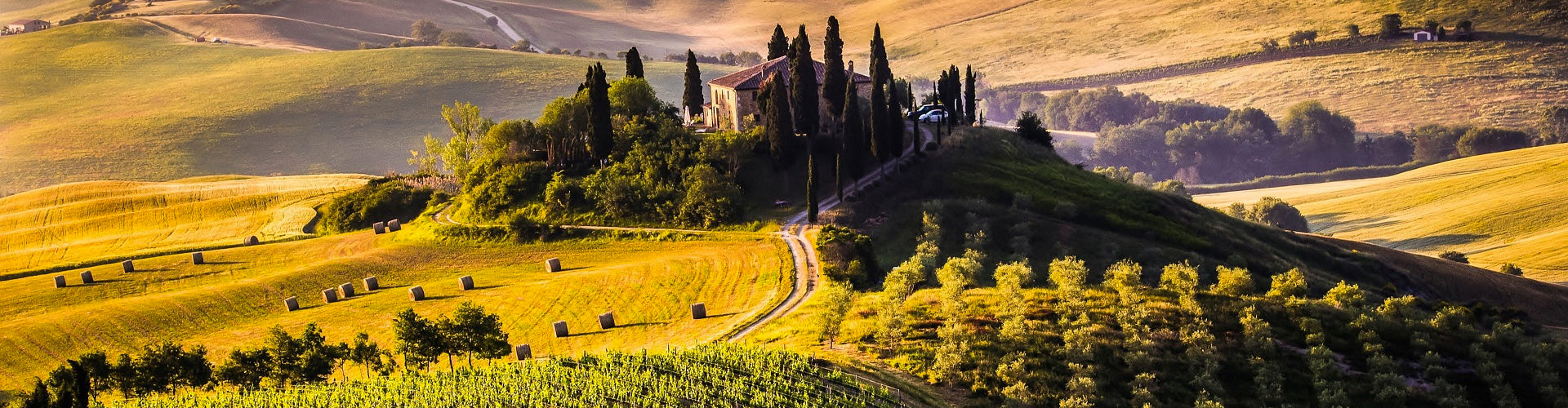 Tuscan Villa on hillside