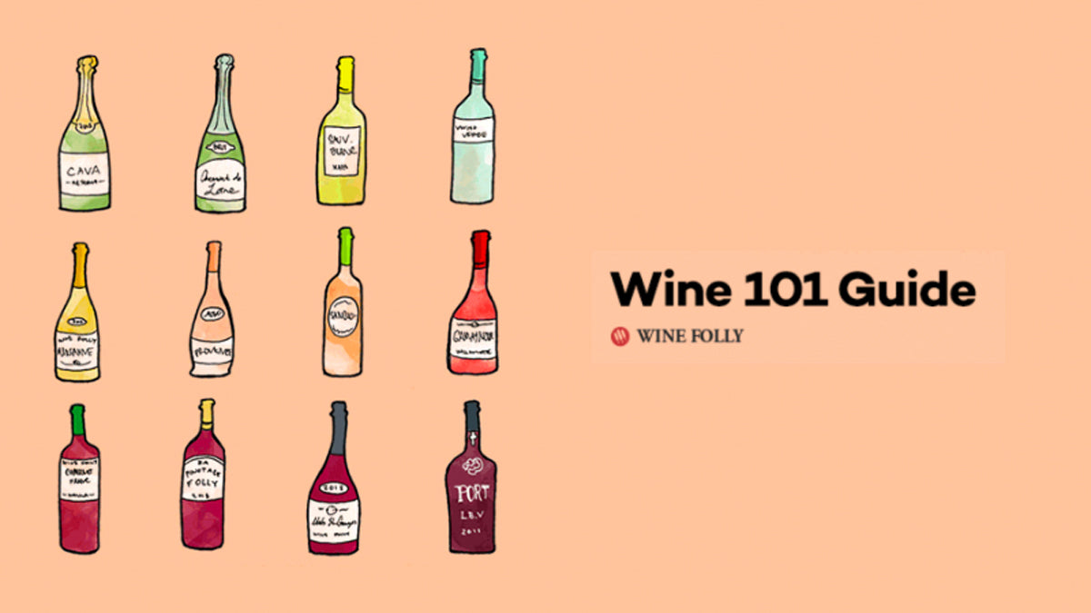 Wine Folly: Wine 101 Beginners Guide to Wine