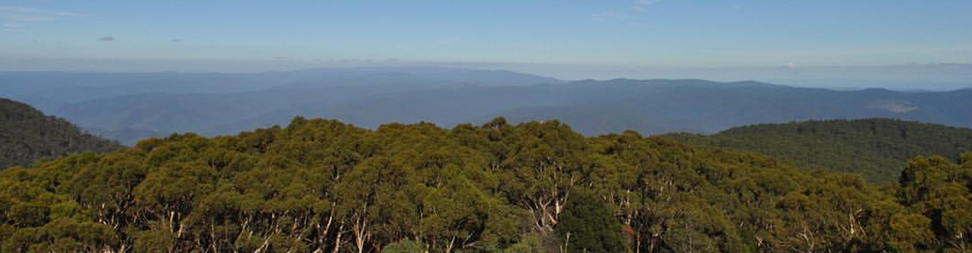 View from Mount Donna Buang Over the Yarra Valley
