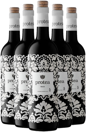Protea Merlot Six Bottle Case