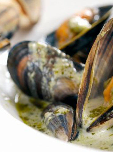 Coconut mussels and Fresh Coriander Pesto