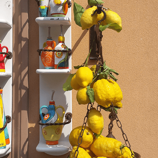 Oil Farm and a Limoncello Factory Tour
