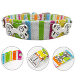 Rainbow Dog Leash Collar Striped