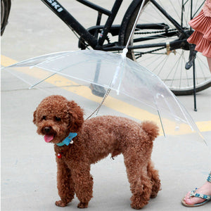 Transparent Built-in Leash Dog Umbrella