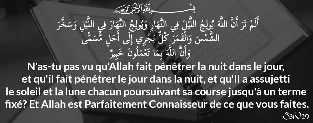 Sourate 31 verset 29 Muslim Mine