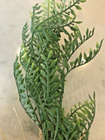 Faux Topiary Fern Plant on Burlap Garden Home Decor Gift