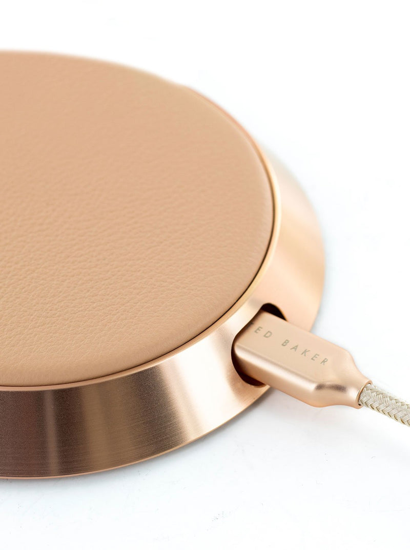 Close up connector image of the Ted Baker Universal power bank in Taupe