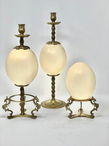 Ostrich Egg | Brass Candlesticks