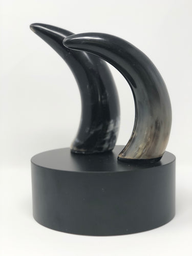 Decorative Horn | Sculptures - Roughan Home