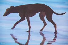 Load image into Gallery viewer, Beach Greyhound - Goosemoose Paint - Made In Folkestone