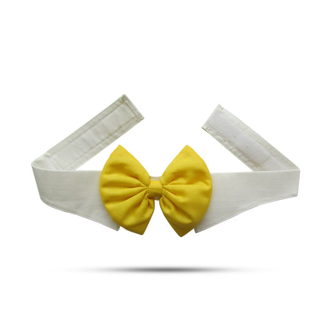 Yellow Bow With Collar