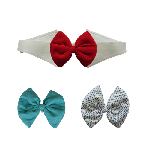 Turquoise, Printed White and Velvet Red Bows with Collar